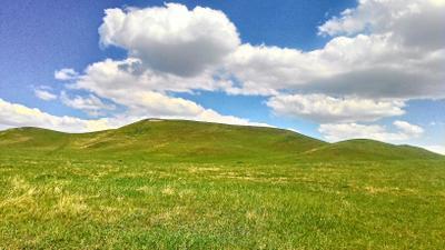 Холм одиночка Пейзаж горы закат зелень луч солнца пчела цветок любовь