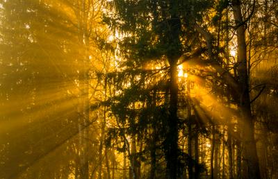 ...В сто тысяч солнц пылал закат...