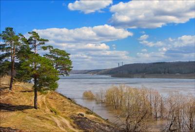 Весны зарисовки. река сосны даль облака