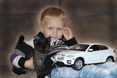 Когда желания совпадают с возможностями... ребенок котенок БМВ
