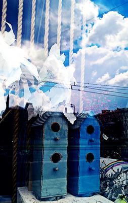 Слои города город москва синева природа скворечник отражение облака цветы картинка