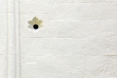 цветочек цветочек стена