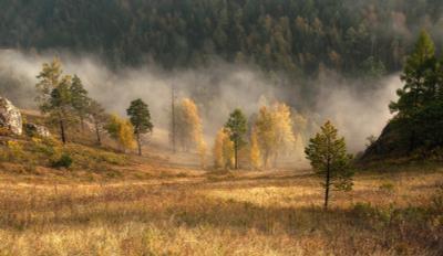 Осенний утренний туман. Осень торгашинский хребет
