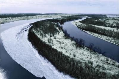 Иртыш. река Иртыш Сибирь Кулунда равнина