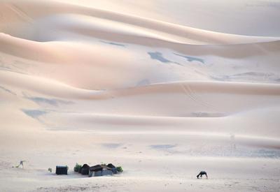 Волны пустыни Марокко Сахара Эрг-Шебби пустыня песок барханы люди верблюды