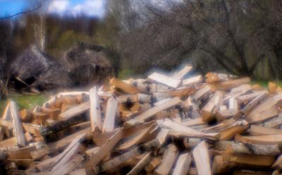 *** монокль дрова сарай разрух деревня