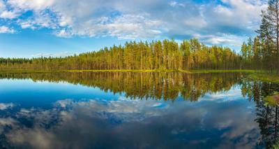 Озеро на болоте болото озеро лес красота отражение