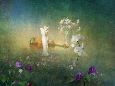Забытый натюр. орхидея статуя фотошоп