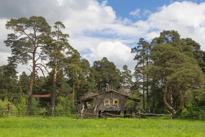 Резиденция Кикиморы Вятской Заречный парк домик Резиденция Кикиморы Вятской