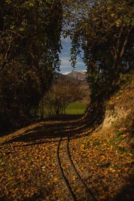 Дорога в рай Путь дорога лес гора небо пейзаж природа