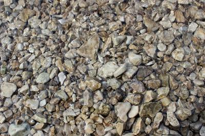 Мокрые камни Вода волга камни