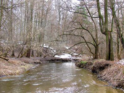 *** весна река