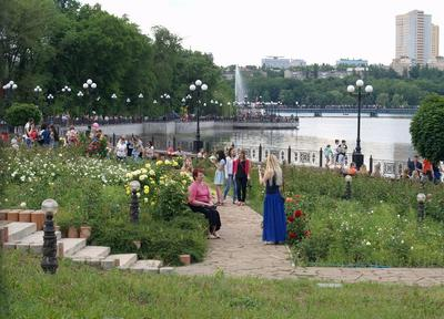 Донецк, парк Щербакова