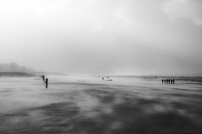 Бельгийский берег