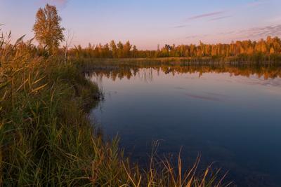 Тихий вечер на озере. озеро вечер природа