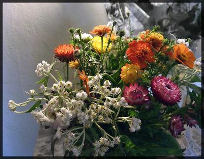 Летний букетик Цветы, Flowers