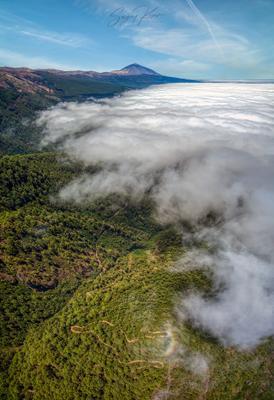 Извилист путь к вулкану Испания Тенерифе Тейде вулкан облака дрон путь лес тропа