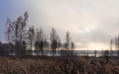Декабрьская тоска пейзаж зима