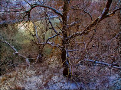 Зима на р. Ока
