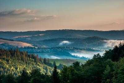 Утренний туман в Карпатах Туман горы Карпаты