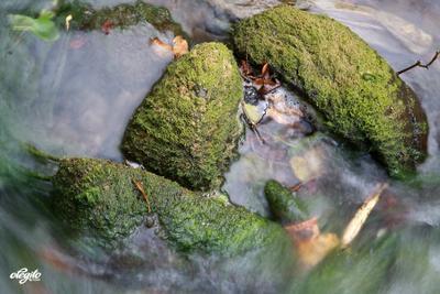 Японские мотивы камень, мох, река, япония