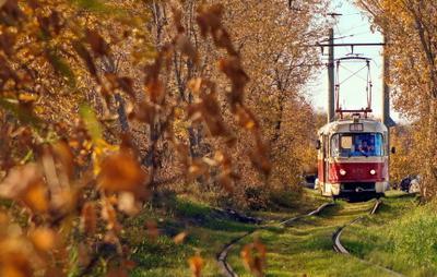 Трамвай трамвай