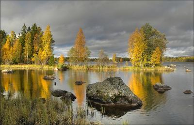 Осень в Швеции II  осень Швеция