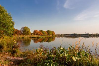 Осенью на озере осенний пейзаж озеро