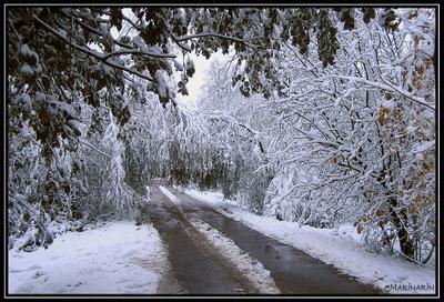Приходила в гости зима. снег зима дорога