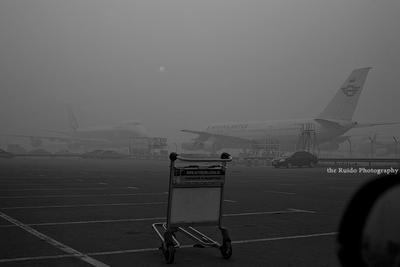 July smog smoke moscow july 2010 domodedovo