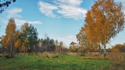 Облачные фигурки. осень пейзаж