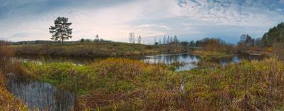 Буйство красок второй половины октября осень река трава небо деревья вода