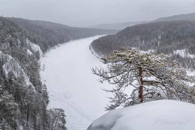 Река Чусовая зима снег дерево пейзаж природа туризм Пермский_край Урал Чусовая панорама река скала