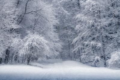 Снежные врата