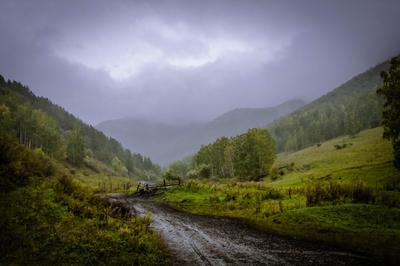 Осенний дождь....(полная версия) Осень дождь горы туман цвет свет лес дорога