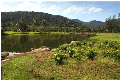 Кусочек рая... рай малайзия озеро цветы краски