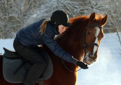 Юная всадница на огненном коне Всадница Конь