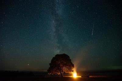 Персеиды в небе Удмуртии млечный путь ночь персеиды метеоритный дождь звезды сосна костер