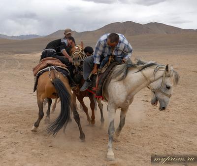 Схватка Козлодрание схватка Памир Мургаб кони состязание