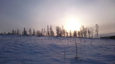 Рассвет морозным утром утро рассвет зима снег холод
