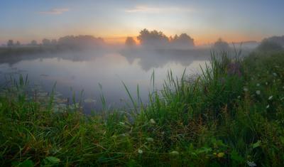 Утро на реке Волчья рассвет волчья туман утро