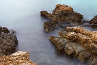 Черепаха вода камни