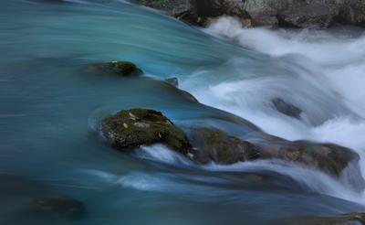 Горный поток горы Кавказ утро река