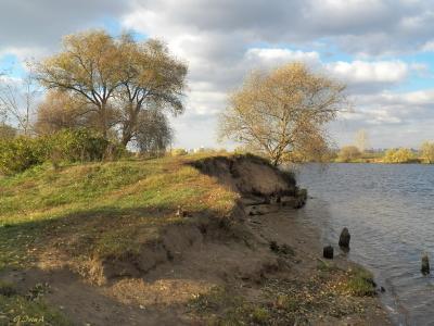 ***Последний солнечный день в октябре. Строгино. Moscow Строгино осень Москва-река берег деревья крутизна