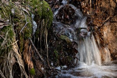 Водопад Вода ручей водопад лес природа