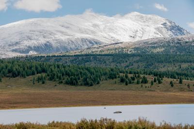 Виды Алтая 20 Алтай горы путешествие