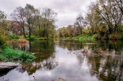 Холодная осень пейзаж природа осень вода река Россия
