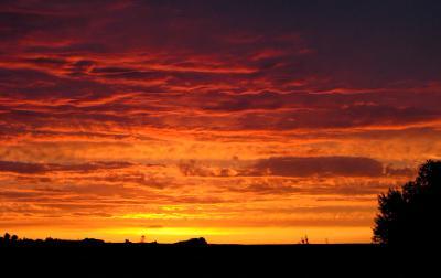 Ряды небо вечер закат природа оранжевый