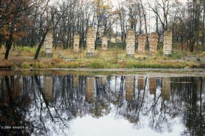 Осенние мотивы Гатчинский парк