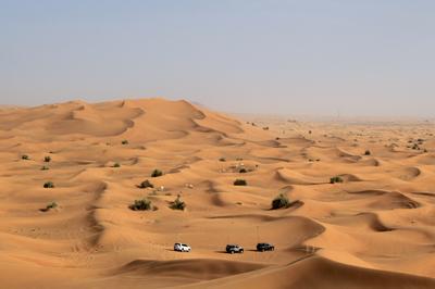 *** UAE desert AlBayader